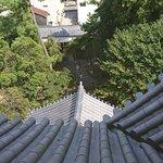 Photo of Ogaki Castle