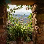 Ventana a la vista panorámica del patio interior