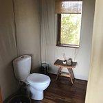 Sayari Camp, Asilia Africa Foto