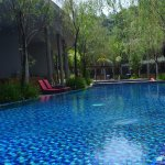 A nice long swimming pool surrounded by the rooms