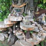 The Galgorm Castle Fairy Trail