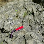A rock climbing anchor atop one of the rock cliffs.
