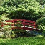 Foto de Miami Beach Botanical Garden