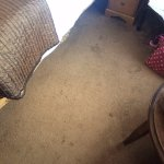 Heavily stained carpet in our 'luxury' room.