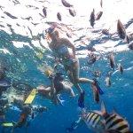 Foto de Aqua Excursions