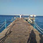 Photo of MinaMark Beach Resort