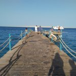 Photo de MinaMark Beach Resort