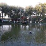 Laguna Focsani Restaurant - Pensiune