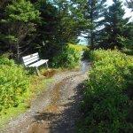 Photo de Quoddy Head State Park