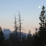 Photo de Tuolumne Meadows Lodge