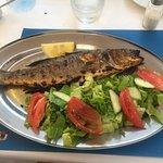 Mousakka and Grilled Seabram