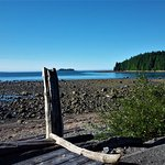 Photo of Mussel Beach Campground