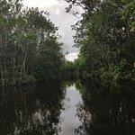 Wilderness Waterway Foto