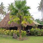 Nukubati Private Island Photo