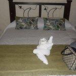 Casa Luna Hotel Double Queen Room