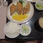Foto van Teshima's