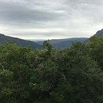 Una vista desde la ventana de la habitación y relax recorriendo el bosque de la parte de atrás