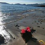 Photo of Sea of Cortez Beach Club
