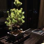 Photo de The Ritz-Carlton, Kyoto