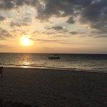 Bild från Castaway Island Fiji