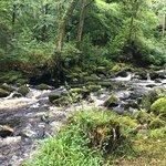 Gidleigh Park Foto