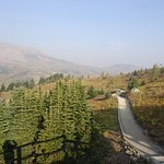 views at the top --smoke hampered, sample of trail
