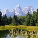 The reflecting pond along the Schwabacher Landing trail.