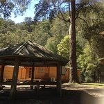Berowra Valley National Park