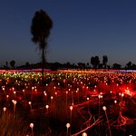 Field of Light installation at Uluru
