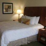 Photo of Hilton Garden Inn Memphis Southaven