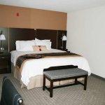 Photo of Hampton Inn & Suites Dumas