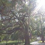 Photo de Savannah Historic District