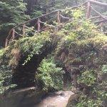 Photo de Mullerthal Trail