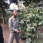 Arusha Coffee Lodge Foto