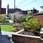 Photo of Courtyard Pittsburgh Shadyside