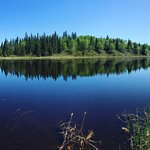 panoramic of a pond on one of the trails