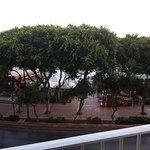 Foto de The Plaza & Plaza Regency Hotels
