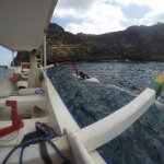 Snorkling trip with private boat free pick up