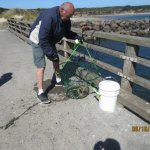 fishing for Dungeness crabs