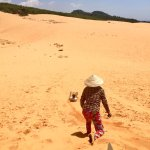 Red Sand Dunes Foto