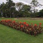 Durban Botanic Gardens Flower Bed