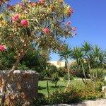 Gepflegter Gartenbereich mit Blumen