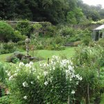 The Walled Garden at Hartland Abbey