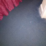 Dingy carpet and bedskirt. Holes in rug.