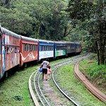 Photo of Serra Verde Express