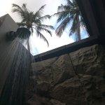 Partial outdoor shower