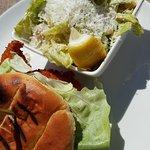 Fish sandwich and cesar salad