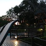 Sabie River Bush Lodge-billede