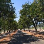 Sterling Vineyards Entrance