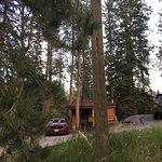 Sylvan Lake Lodge resmi